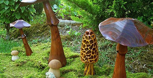 Une mini forêt de Champignons