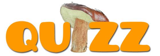 Quizz champignons comestibles